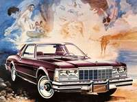 1979 Plymouth Caravelle - This Is A Photo Of A Car Which Was Only Available In Canada.