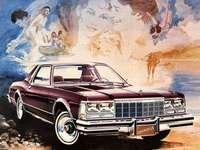 1979 Plymouth Caravelle - Esta es una foto de un automóvil que solo estaba disponible en Canadá.