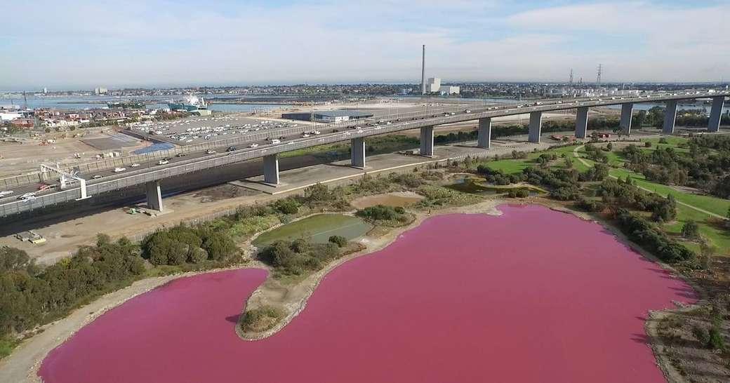 lago rosa in australia - m (13×7)