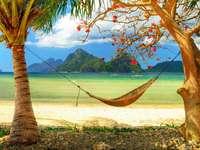Visie - Hangmat op het strand. Visie.............. En ik kan hem al zien.