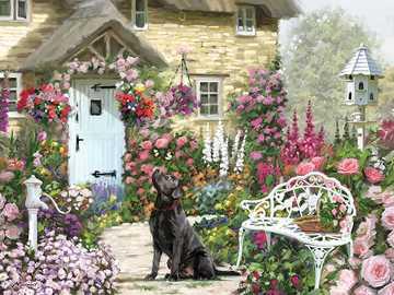 bonita casa - Casa, perro, flores, afuera