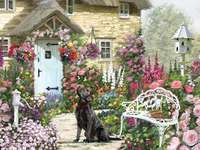 beautiful house - House, dog, flowers, outside
