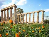 Metaponte templom Hera Basilicata Olaszország