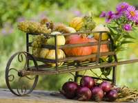 Podzimní zahradní dekorace s ovocnými květy - Podzimní zahradní dekorace s ovocnými květy