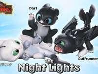 lumières de la nuit