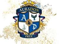 Rompecabezas de preparación de Auradon
