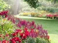 duży ogród - duży wypielęgnowany ogród