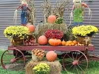 Podzimní dekorace dýní a rostlin - Podzimní dekorace dýní a rostlin
