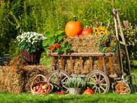 Autumn decoration in the garden - Autumn decoration in the garden