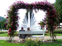 Elderly couple on a bench under the rose arch - Elderly couple on a bench under the rose arch
