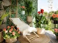 balcon fleuri - m ...................