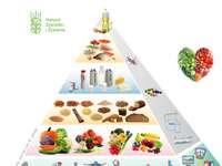 Пирамида за детско хранене