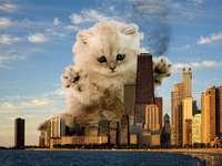 gattino gigante - un gattino gigante divora la città