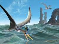 Moře, Pterosaurs - m .....................