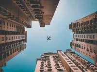 Look up shot of an airplane going over the buildings - airplane flying over high rise buildings during daytime. Noida, Uttar Pradesh, India