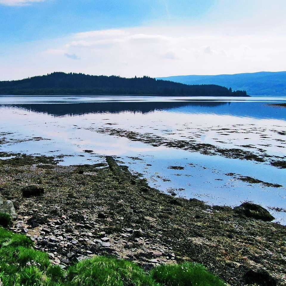 Champ d'herbe verte près du lac sous un ciel bleu pendant la journée - Lochgair est un village d'Argyll and Bute, en Écosse. Il se trouve sur la côte du Loch Gair, une petite crique à l'ouest du Loch Fyne (Wikipedia). Lochgair, Lochgilphead, Argyll. Ecosse, Royaume-Un (14×14)
