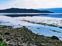 Champ d'herbe verte près du lac sous un ciel bleu pendant la journée