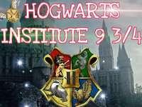 H.I 9 3/4 - Hogwarts Institute Puzzle 9 3/4