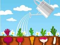 Huerta EM CASA - organize as peças para montar o jardim