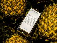 telefon på ananas - Mjuk pulver, citrusfrukter och godisfrukt. • Agonist Parfums - Arctic Jade •.