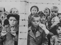 Niños - Rompecabezas de la Segunda Guerra Mundial