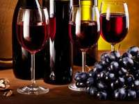Bere vino - Degustazione di vari vini