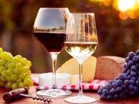 Vini e formaggi - Degustazione di vini e formaggi