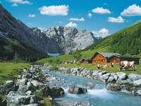 планини в Австрия - м .....................