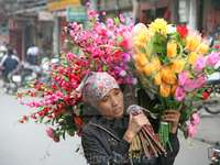 woman carrying flowers for sale