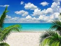 Léto. Pláž. Oceán. - Krajina puzzle.