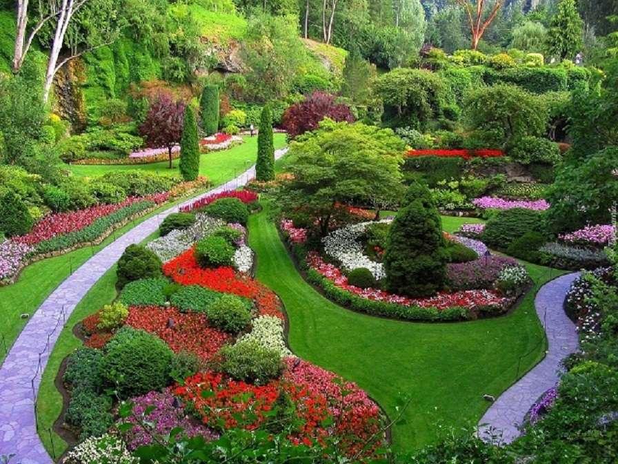 Градина с цветя - Много хубав парк с цветя (10×8)