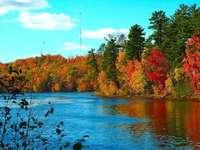 Есен край водата - Есен, вода, дървета, небе