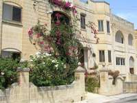 Row of houses in Malta