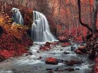 φθινόπωρο στο δάσος με έναν καταρράκτη - Μ ..........................