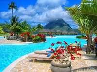 plavecký bazén v tropech