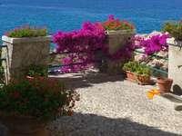Marciana Marina på Elba Italien - Marciana Marina på Elba Italien
