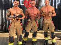 Beautiful firefighters and mini dachshunds