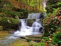 bieszczady - waterfall hidden in the forest