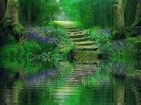 Ambiente verde de bosque y lago - Ambiente verde de bosque y lago