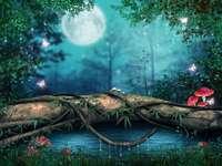 Pădure de basm în luna plină