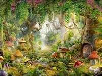 Sagaskog med många svamphus