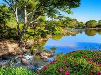 view - Trees, water and flowers
