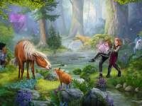 descansar - Árvores, cavalos, riacho, pessoas