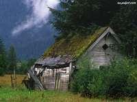 Kunyhó a hegyekben
