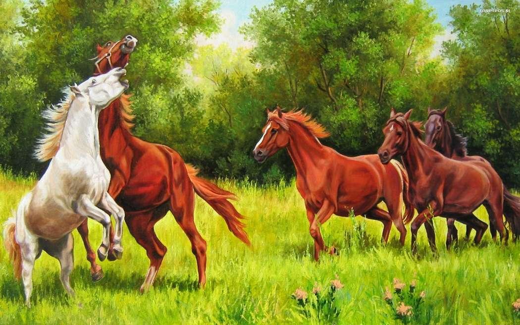 коне на поляната - природа коне природа (11×7)