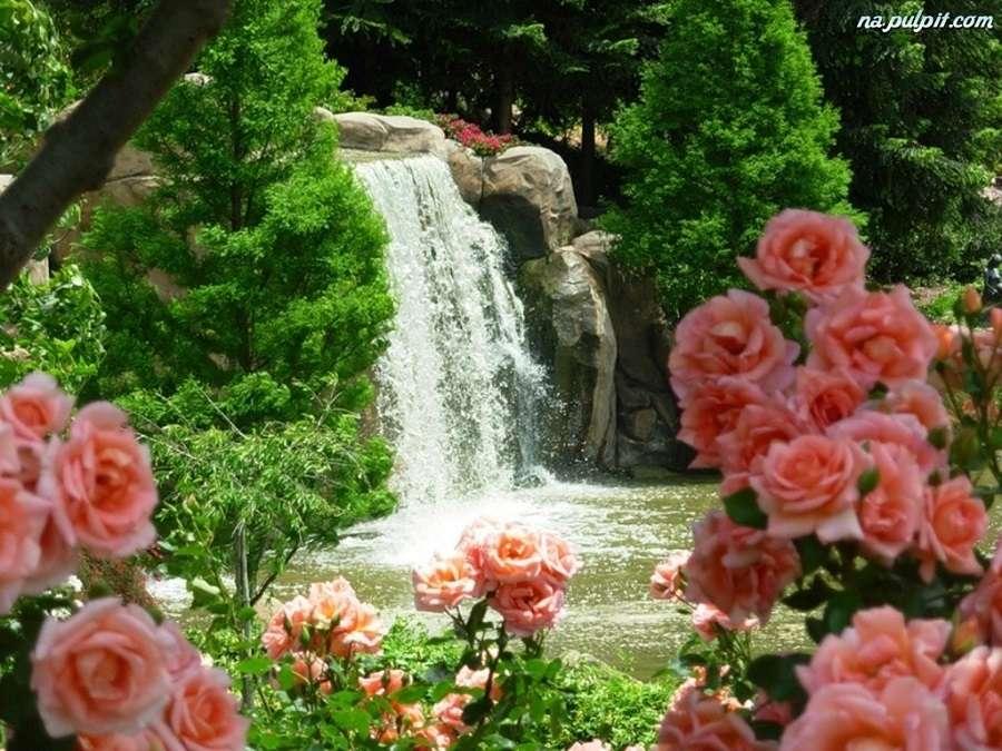 изглед - природа водопад рози (9×7)