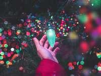bokeh fotografering av personen som håller grönt strängljus