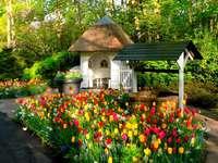Pavilon és a kertben