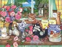 γατάκια στο περβάζι
