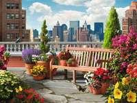 Terrasse avec des fleurs
